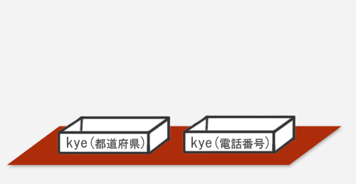 customfield_kye_02