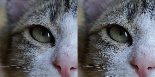左がシャープなし、右がシャープを適用したものです。